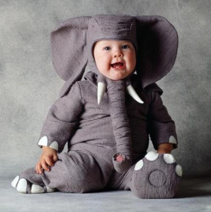Disfraz de elefante de Tom Arma