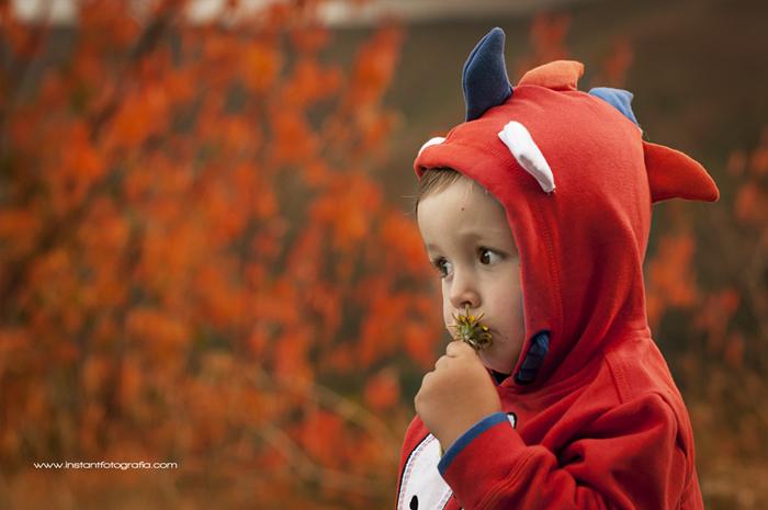 Fotografia infantil bosque 07