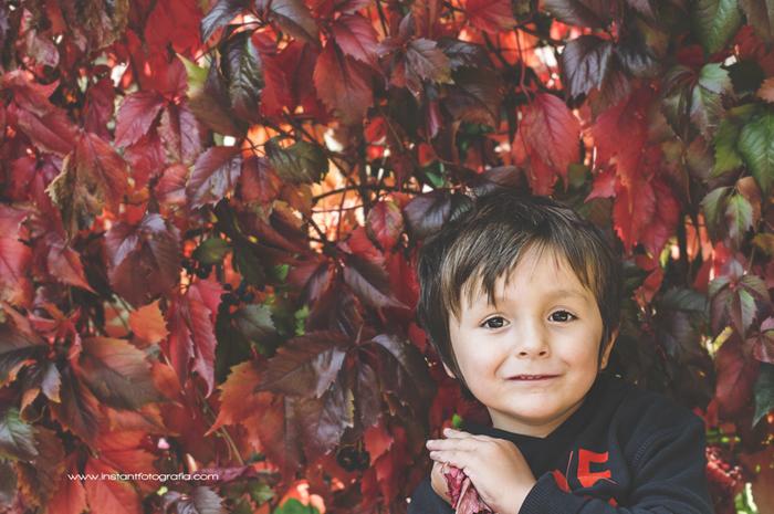 fotografia infantil bosque 06