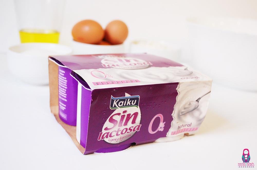 Kaiku sin lactosa 01