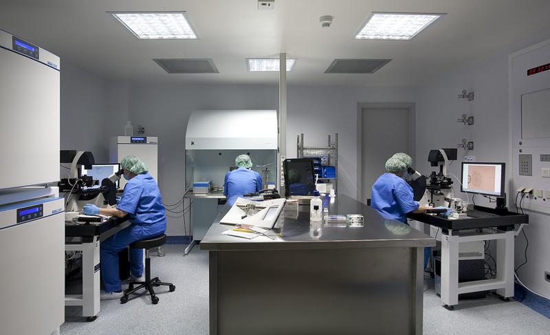 Barcelona IVF biologos