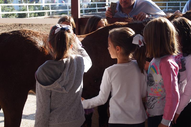 Cumpleaños hípico Pony Club Aragon