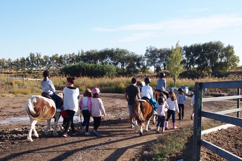 Cumpleaños hipico Pony Club Aragon