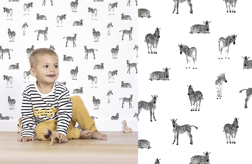 Lilipinso Zebre