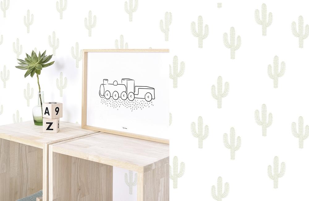 Lilipinso Cactus