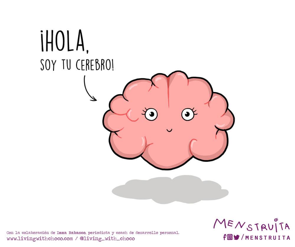 Menstruita cerebro